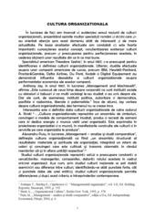Cultura Organizationala in Banca Transilvania